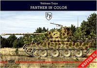 Panther in Color