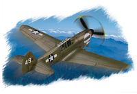 P-40N Kitty hawk - Image 1