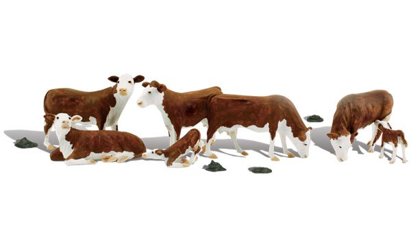 A1843 Hereford Cows - Image 1